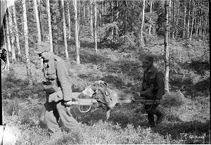 Kaatuneita suomalaisia kannetaan Juttulammen maastossa