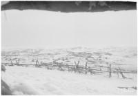 SA-kuva. Kuvia ampuma-aukosta Litsan rintamalta. Petsamo 1943.04.10